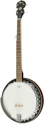Rogue - TAGS: Resonator Openback Sixstring Tenor